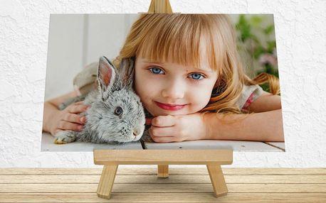 Laminovaný fotoobrázek na dřevěném stojanu