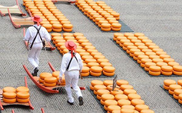 Za chutí sýrů do města Alkmaar, návštěva Amsterdamu a mlýnů v Zaanse Schans