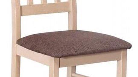Jídelní židle STRAKOŠ B IV