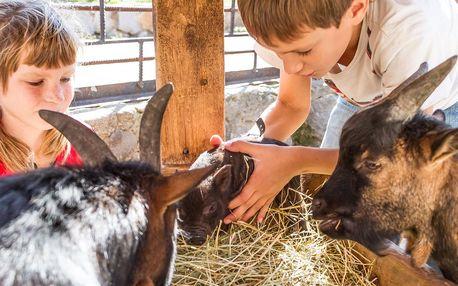 Pobyt na rodinné farmě s polopenzí i masáží