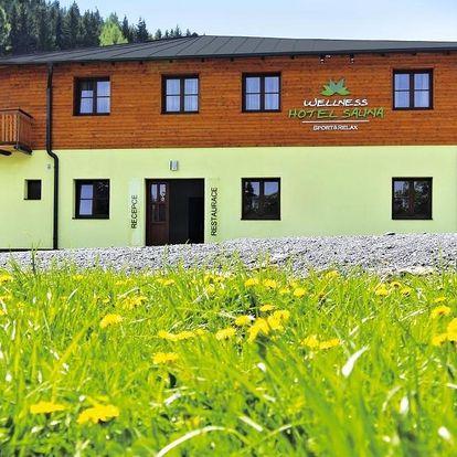 Jeseníky: Wellness hotel Sauna