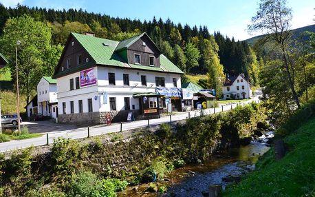 Královohradecký kraj: Hostel Fortuna