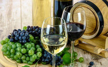 Dovezeme vám degustační balíček vín z Gruzie s online výkladem