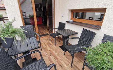 Žatec, Ústecký kraj: Apartmány Aranka