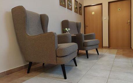 Kašperské Hory, Plzeňský kraj: Hotel Modrásek