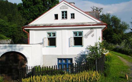 Karlovarský kraj: Rainmühle