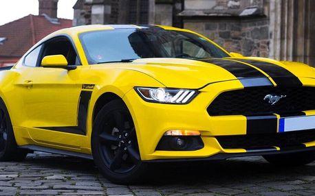 30–180 min. v Mustangu bez limitu najetých km