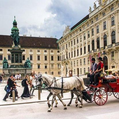 Lázně, víno a moderní hotel nedaleko Vídně 3 dny / 2 noci, 2 osoby, snídaně