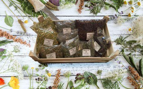 Léčivé bylinky pro přípravu čajů, nálevů či odvarů