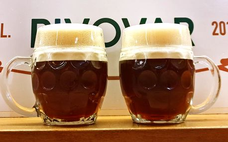 Prohlídka pivovaru s degustací mladých piv