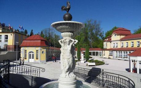 Letní relax v Jizerkách: wellness a lázeňské procedury + večeře - dlouhá platnost poukazu