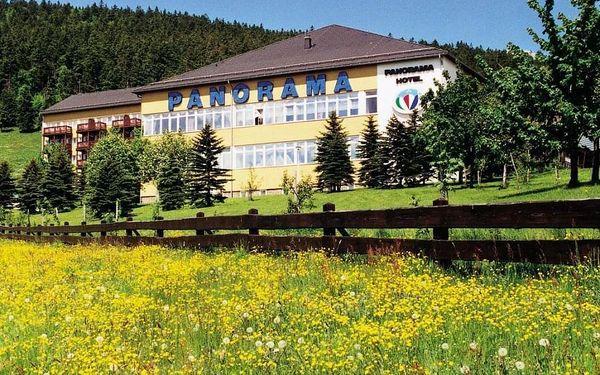 Relax v Krušných Horách s bazénem a saunou - dlouhá platnost poukazu
