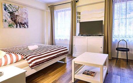 Dovolená v moderních apartmánech pod Klínovcem