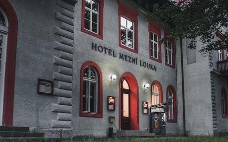 Hřensko, Ústecký kraj: Hotel Mezní Louka