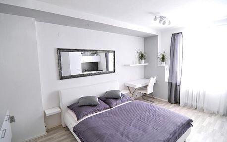 Jizerské hory: AVAX apartment Liberec
