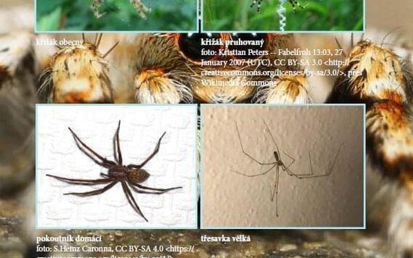Kniha o přírodě Od vroubenky ke hvězdám3