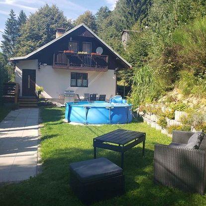 Ústecký kraj: Holiday home in Janov 40827