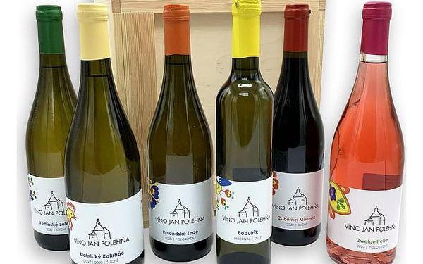 Degustace vína s předtočeným videem, cca 1 hodina, počet osob: 1 karton, V pohodlí domova (Celá ČR)2