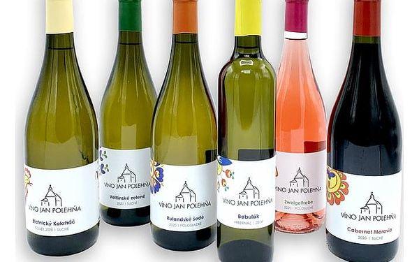 Degustace vína s předtočeným videem, cca 1 hodina, počet osob: 1 karton, V pohodlí domova (Celá ČR)4