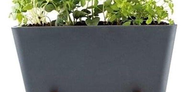 """WaterWick - samozavlažovací mini truhlík """"Plant Box"""" - antracitová"""