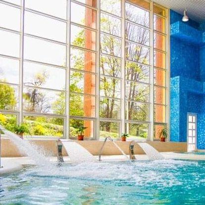 Konstantinovy Lázně: Luxus ve 4* Hotelu Löwenstein ve Studiu/Apartmá s kuchyňkou + wellness, masáž a polopenze