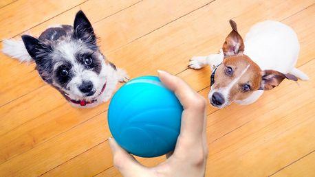 Chytrý míček Cheerble Wicked Ball pro psy