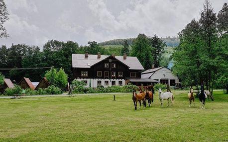 Olomoucký kraj: Penzion Isolde