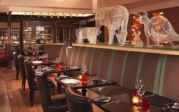 HOTEL ANANTARA THE PALM DUBAI, Dubai, Spojené arabské emiráty, Dubai, letecky, polopenze3