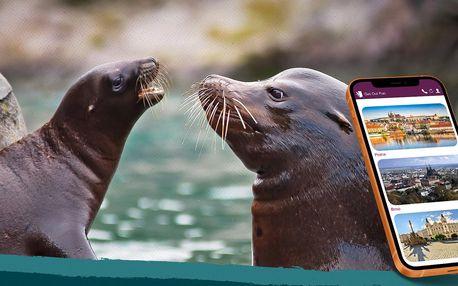 Populární venkovní úniková hra – Záchrana lachtanů v Zoo Lešná