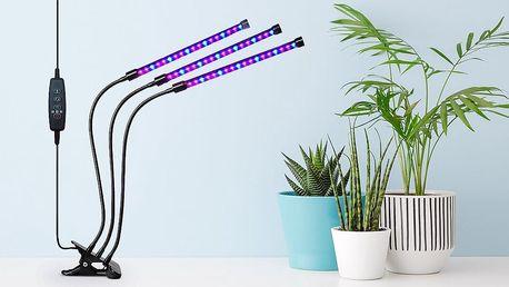 LED osvětlení pro pěstování rostlin doma: 30-40 W