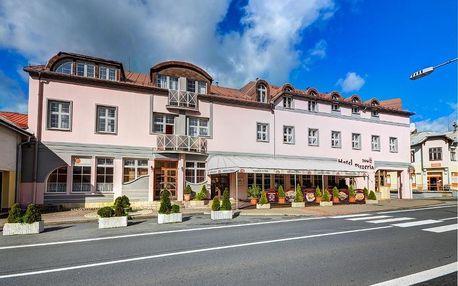 Lázeňské městečko Velké Losiny: Hotel Pizzeria Istria