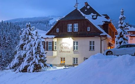 Královohradecký kraj: Hotel Domovina