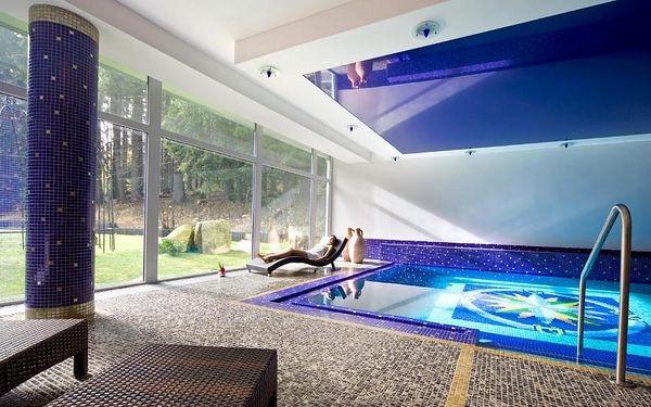 Karlovarský kraj: Spa & Wellness Hotel St. Moritz