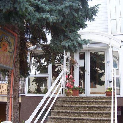 Znojmo, Jihomoravský kraj: Pension Zita