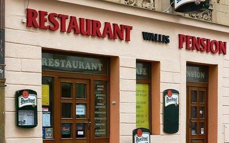Plzeňsko: Pension Wallis