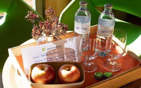 Kouzelný Salzburg a ubytování v hotelu s TOP hodnocením 3 dny / 2 noci, 2 os., snídaně2