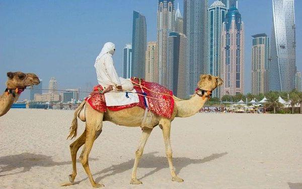 NOVOTEL DUBAI AL BARSHA, Dubai, Spojené arabské emiráty, Dubai, letecky, bez stravy3