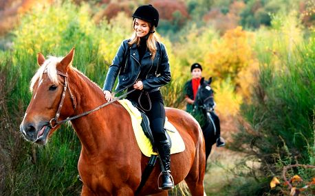 Den u koní: výuka ve stáji i vyjížďka do přírody