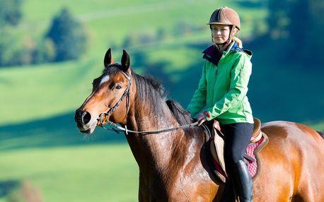 Vyjížďky pro začátečníky na koni či poníkovi