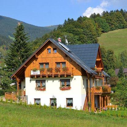 Rokytnice nad Jizerou, Liberecký kraj: Apartmány Ski Lift