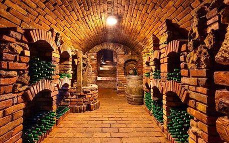 Jižní Morava: Pobyt pro milovníky vína v Penzionu Zaječák s polopenzí, džbánkem vína a degustací místních vín