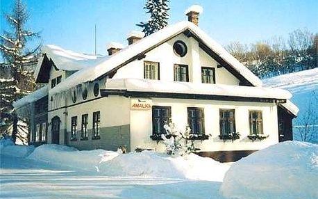 Rokytnice nad Jizerou, Liberecký kraj: Pension Amálka