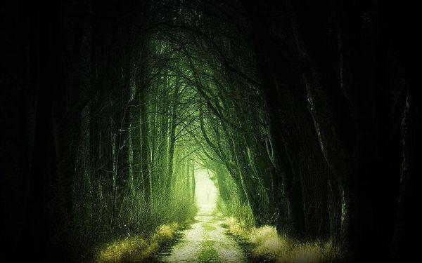 Venkovní úniková hra Lovci Duchů – Zakletá stezka4