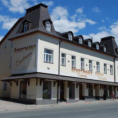 Rokytnice nad Jizerou, Liberecký kraj: Apartmány Centrum with Garage