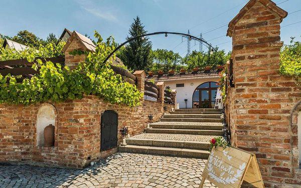 Až do června 2022 ve vinařství Krýsa na Moravě s polopenzí i prohlídkou vinohradu