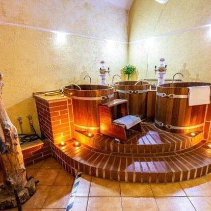 Jižní Čechy: LH Hotel Dvořák Tábor **** s wellness, pivní či rašelinovou koupelí a polopenzí + balíček slev