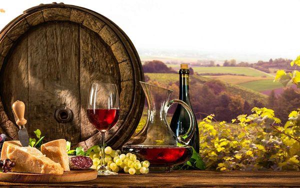 Penzion V Zahraničí na Jižní Moravě s neomezenou konzumací vína, hudbou a polopenzí