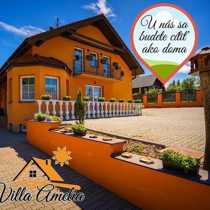 Rajecké Teplice, Slovensko: Villa Amelia