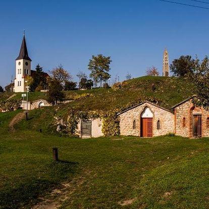 Vrbice, Jihomoravský kraj: Penzion U TŘÍ RŮŽÍ
