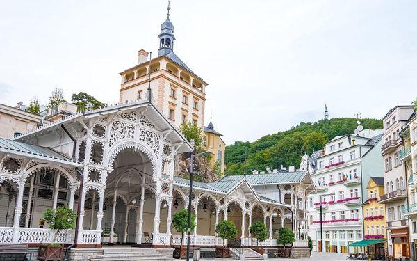 Pobyt v Karlových Varech s polopenzí i procedurami